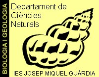 ies-josep-miquel-guardia