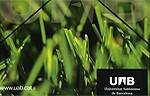 UAB carpeta